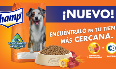 mars expands its portfolio of dog food brands in mexico