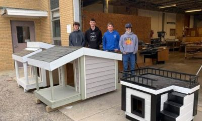 students need help building dog houses for their local animal