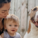 "youtuber / new mom euthanizes dog for being ""aggressive"" and"
