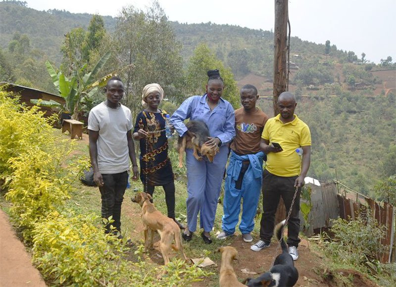 dog rescue in central africa