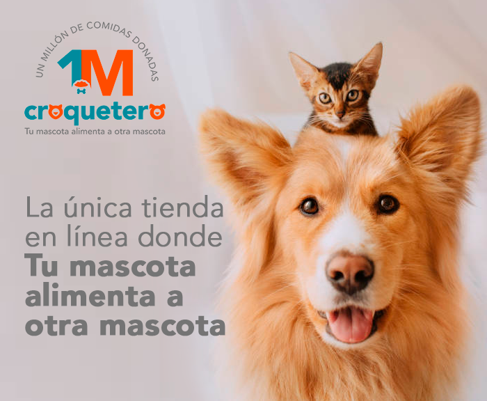 pet food seller croquetero combines high tech with social good