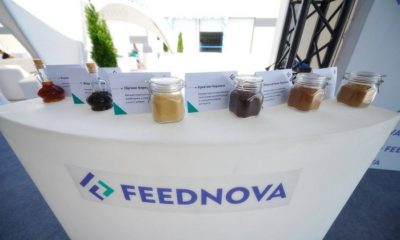 new plant in ukraine produces animal by products for pet food