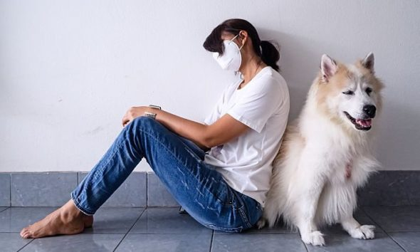us millennials adopted pets at highest rate in pandemic